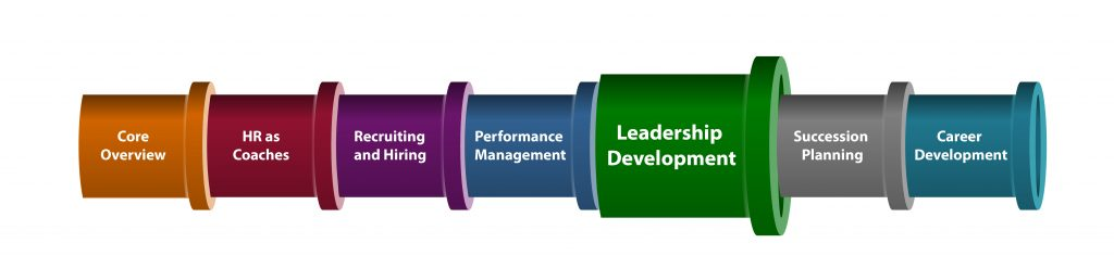 Systems Approach-Leadership